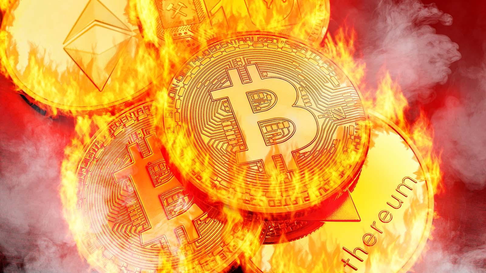 Crypto Craziness